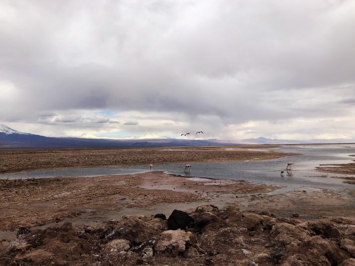 Laguna Escondida antes de llover